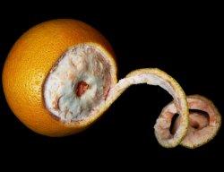 Les mer om Appelsin skall r�tt hos oss.