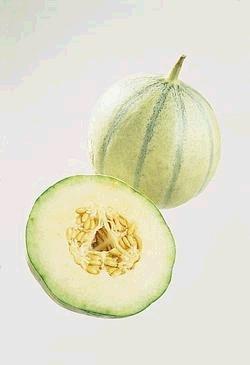 Les mer om Charantais melon hos oss.