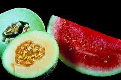 Prøv også Melon.