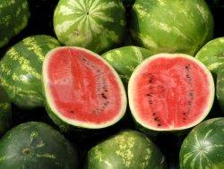 Prøv også Melon, vann, rå.