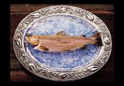 Besøk Hardanger fjellfisk
